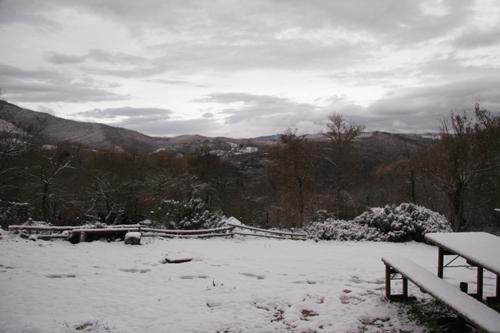 初雪が降りました_f0106597_18242352.jpg