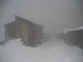 雪だ!_c0146040_2101974.jpg