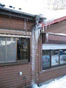 雪だ!_c0146040_213397.jpg