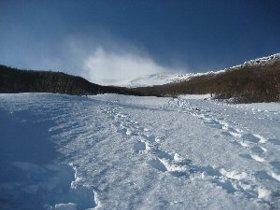 雪だ!_c0146040_2141473.jpg
