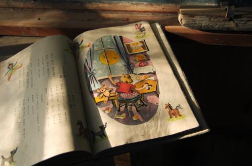 静岡の廃校_f0025948_10335029.jpg