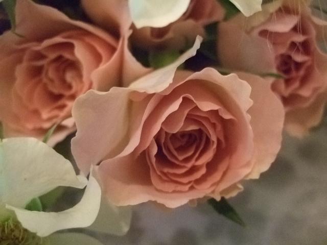 オークリーフ(フランネルフラワーを入れた花束)_f0049672_17195377.jpg