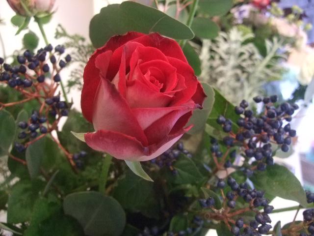 オークリーフ花の教室(松崎さんの作品)_f0049672_1725028.jpg
