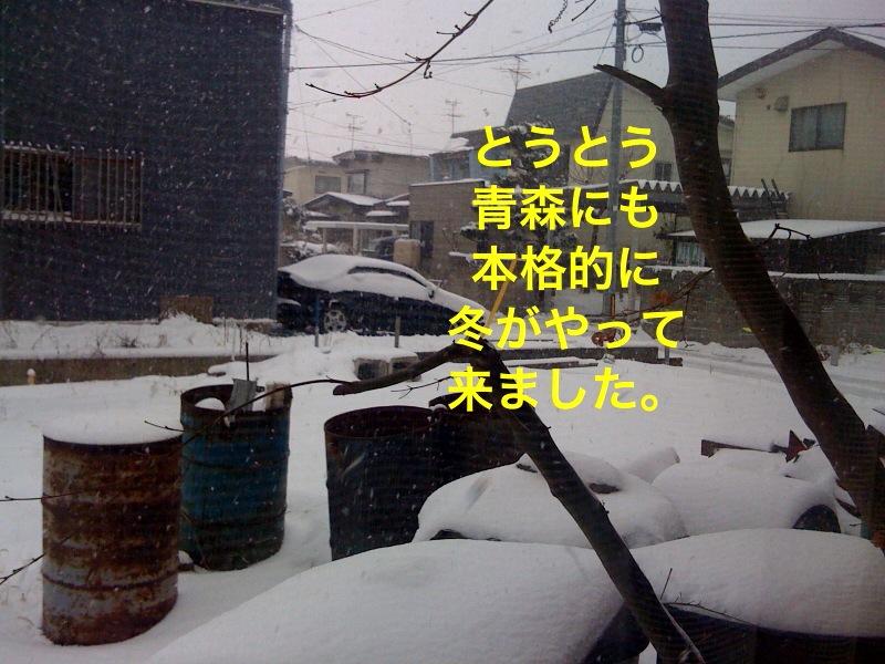 f0168374_1133527.jpg