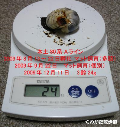 f0183484_0581964.jpg