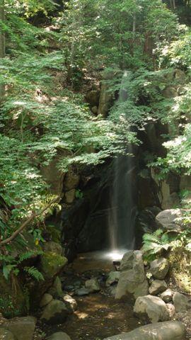 名主の滝公園_b0175688_2312174.jpg