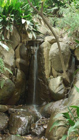 名主の滝公園_b0175688_23253332.jpg