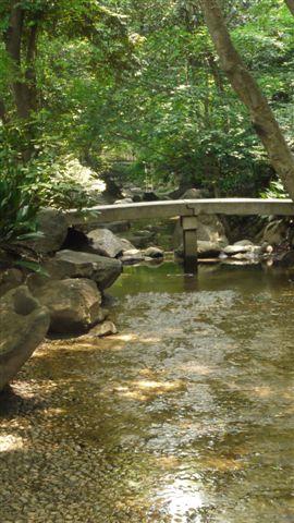 名主の滝公園_b0175688_23302652.jpg