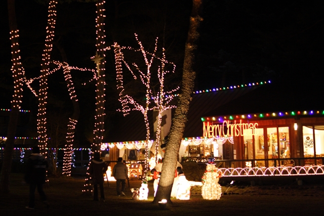 クリスマス近い恵みシャレー_f0091207_1442893.jpg