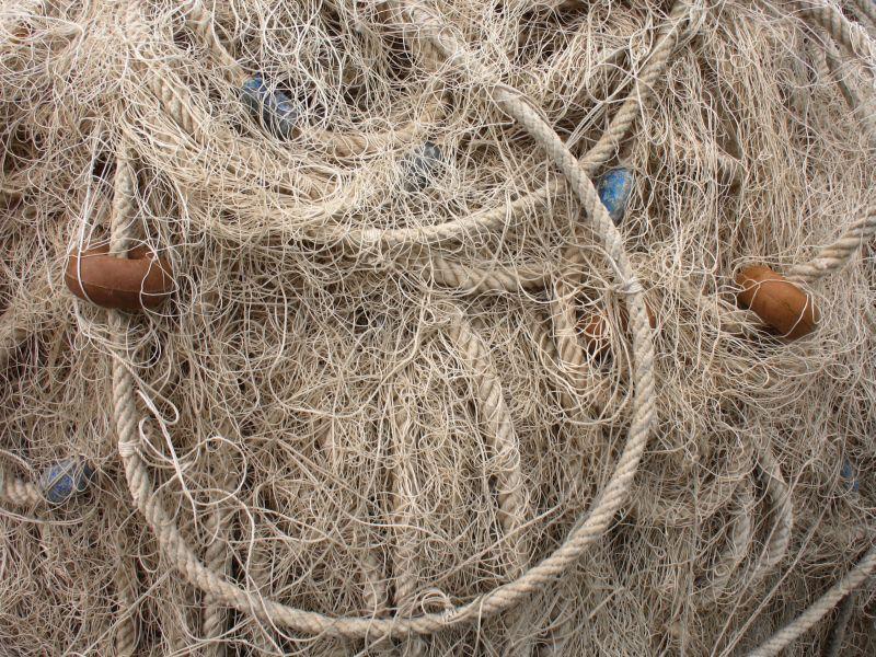 もつれた糸はどこから解きほぐしたら良いのか_c0025115_2143383.jpg