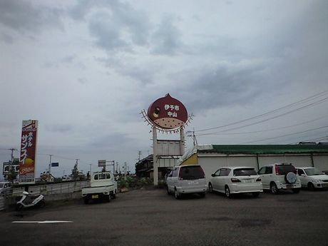 四国の鉄道 3_b0005281_2213468.jpg