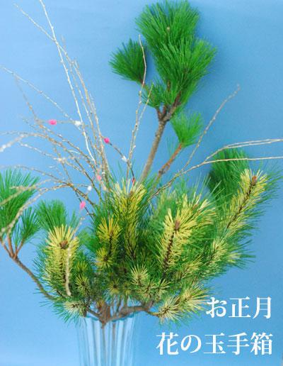 お正月 切り花アソートセット 花の玉手箱_a0115684_205390.jpg