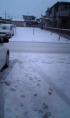 雪が降りました。_d0005807_781930.jpg