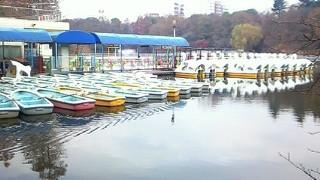 真冬のボートのりば_c0157242_6323736.jpg