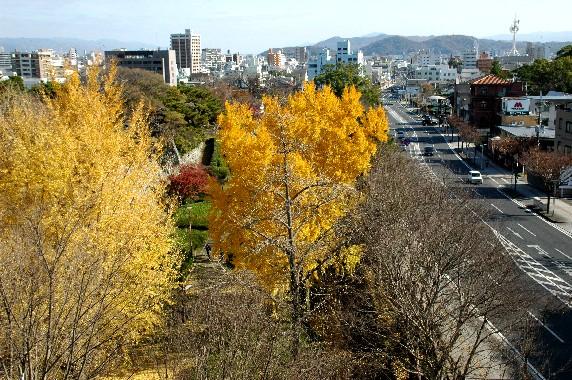 和歌山城公園にて_b0093754_23582149.jpg