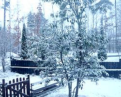 安曇野も雪です。_d0050155_23204451.jpg