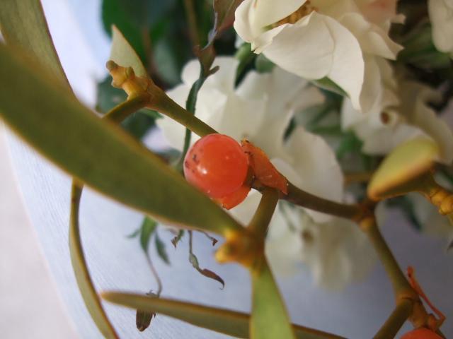 オークリーフ(バラとヤドリギの花束)_f0049672_17442637.jpg