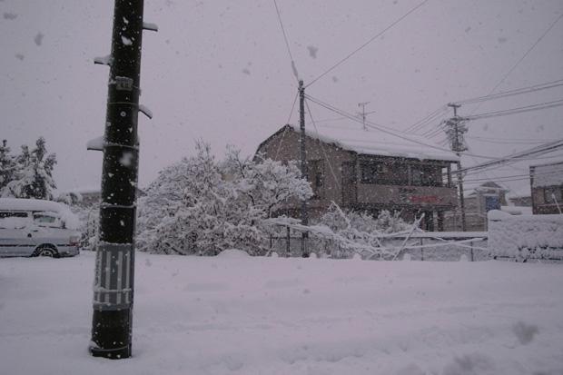 Snow Flakes #2_e0174281_224973.jpg