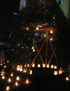 苦楽園口・夙川キャンドルナイト「光の散歩道」2009冬至・2_e0055098_025149.jpg