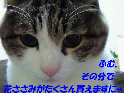 a0039600_2256102.jpg