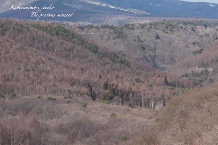 09/12/17 大泉からの富士山/清里で八ヶ岳_c0137403_2152972.jpg