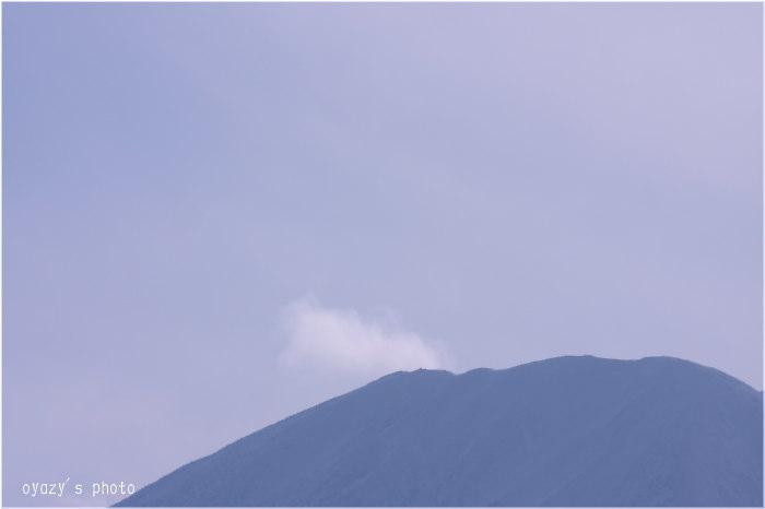 雪隠れ_a0071514_15555040.jpg