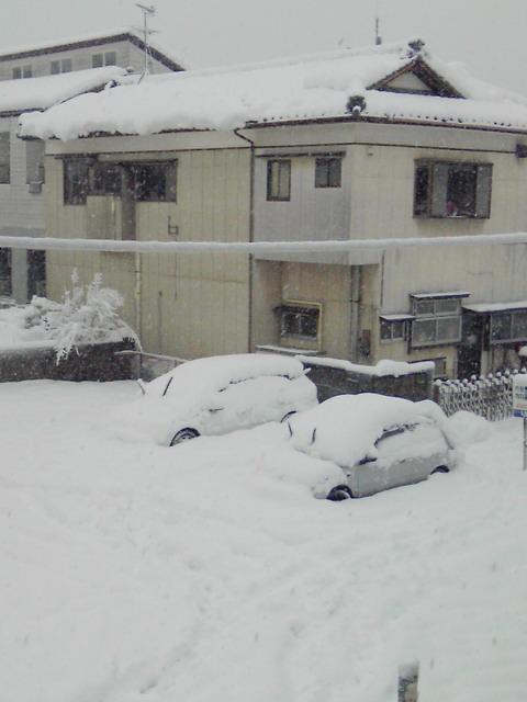 大雪宣言_e0062921_1003870.jpg