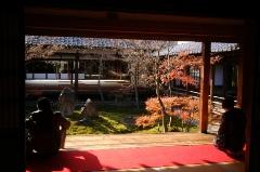 京都出張_d0147944_1246915.jpg