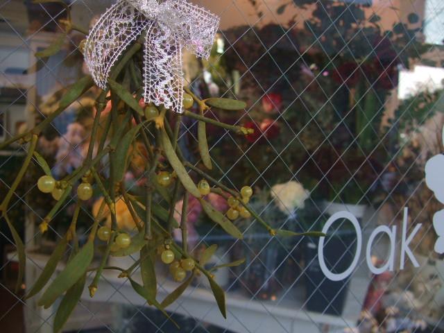 オークリーフ(花の色)_f0049672_15440100.jpg