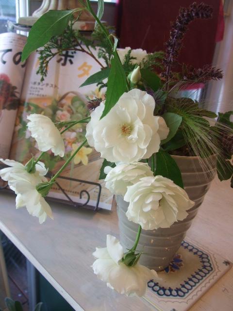 オークリーフ(花の色)_f0049672_1551921.jpg
