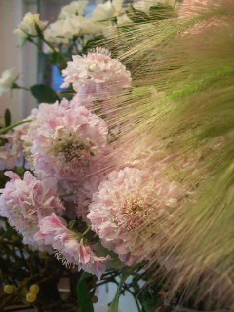 オークリーフ(花の色)_f0049672_1561618.jpg