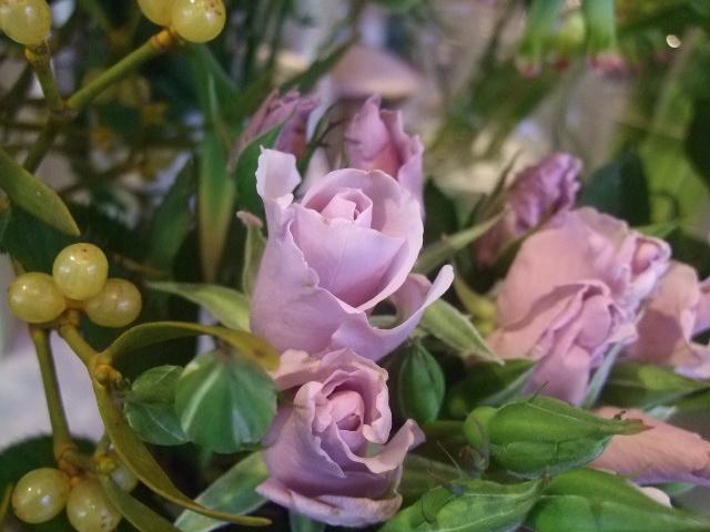 オークリーフ(花の色)_f0049672_159574.jpg