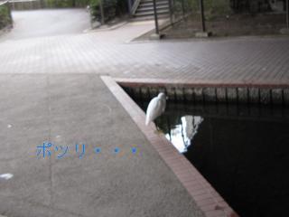 b0113990_18325963.jpg