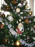 クリスマスツリー_f0081414_153628.jpg