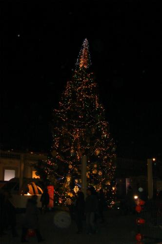 クリスマス気分_c0222316_3162777.jpg