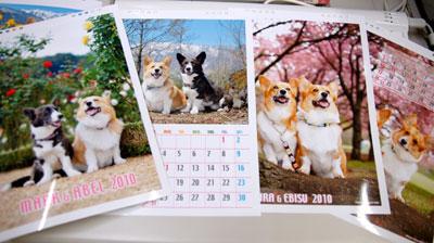 カレンダープリント中_d0102523_1953262.jpg