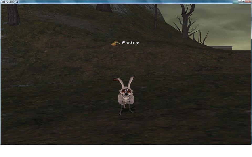 雪ウサギ  追記あり_f0063726_1242926.jpg
