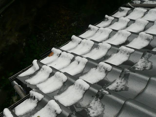 雪景色♪_f0099147_22553490.jpg