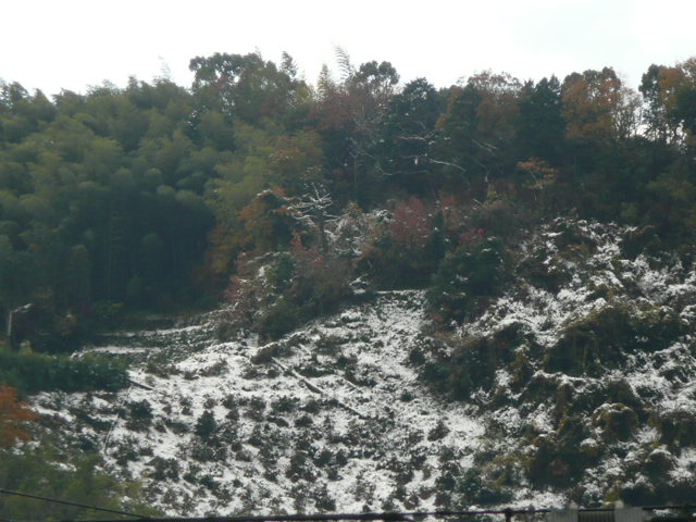 雪景色♪_f0099147_22582042.jpg