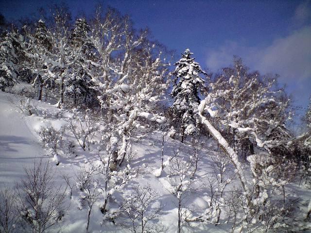 札幌国際スキー場★2日目_c0151965_1535241.jpg