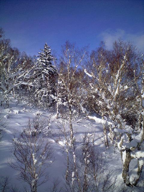 札幌国際スキー場★2日目_c0151965_154815.jpg