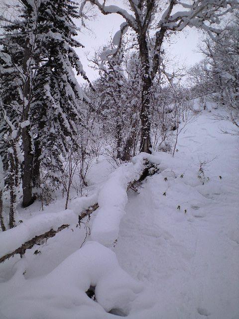 札幌国際スキー場★2日目_c0151965_1565560.jpg