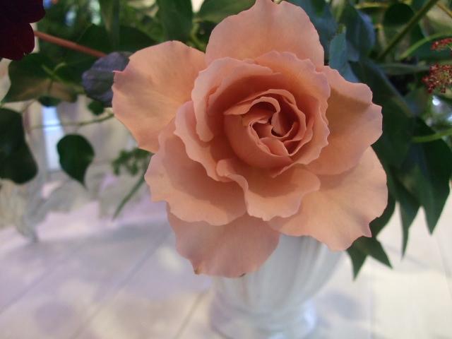 オークリーフ花の教室(石井さんの作品)_f0049672_1731736.jpg
