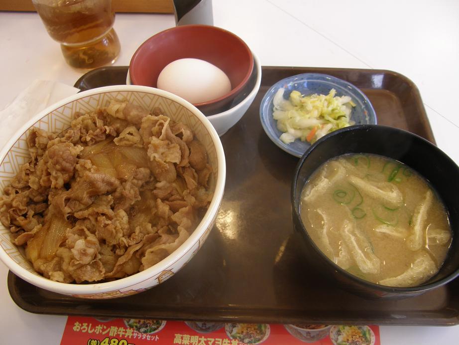 すき家の牛丼    中環大日店_c0118393_7392939.jpg