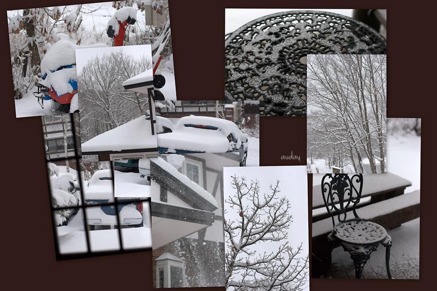 大雪~ スキー場19日よりプレオープン!_c0048494_101647.jpg