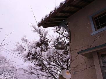 雪色欅ガルテン_d0087595_1281564.jpg