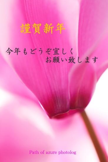 f0151200_9531944.jpg