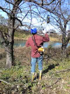 「春のお花見ウォーク」に向けた沼川、滝川の遊歩道整備_f0141310_2313514.jpg