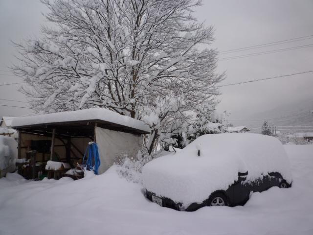 降って積もっての大雪!_f0207410_1717569.jpg