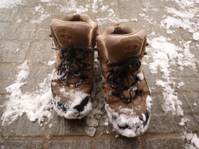 降って積もっての大雪!_f0207410_17231636.jpg